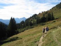 Wandelen en nordic walking: veel mogelijkheden